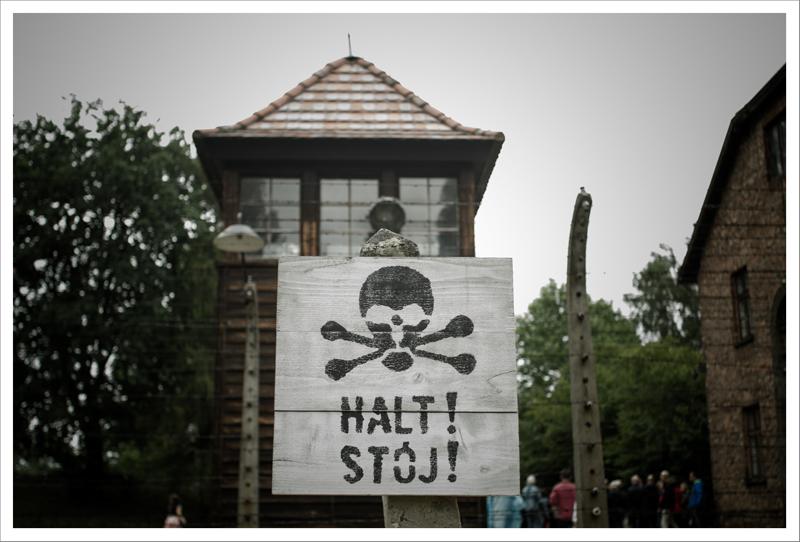 Auschwitz-38