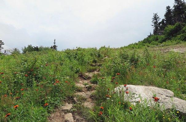 Saddleback Resort Hike Climb