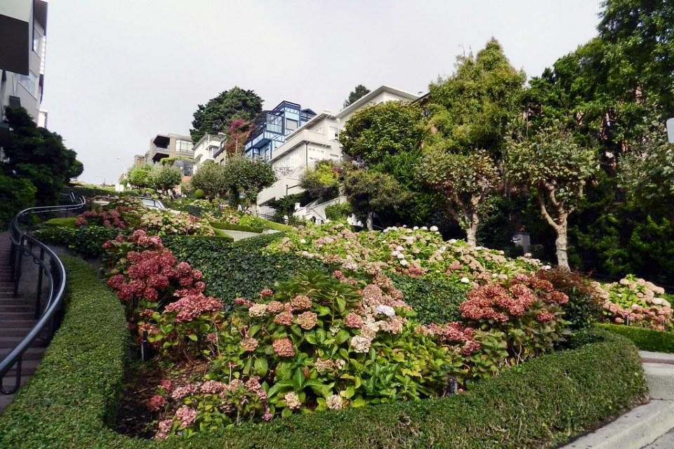Calle Lombard Street San Francisco California EEUU 03
