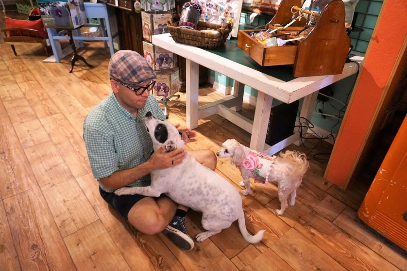 Alvin Almodovar Plays with Radcliff During Our Visit to Brownie's Dog Boutique While Their Rescue Dog Delilah Looks On in Daytona Beach, Fla., July 15, 2017.