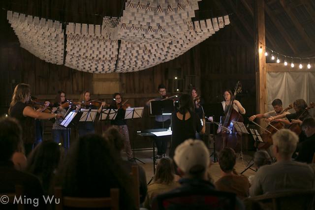 Forest Strings Ensemble @ Arb2017