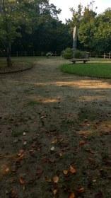 Dogo Park