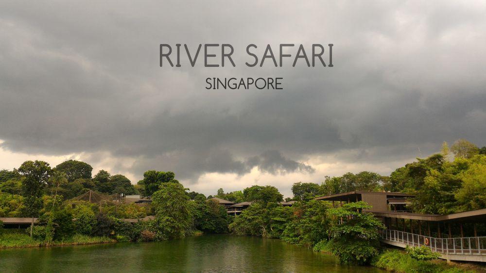 River Safari 1_zpsp09sfvga