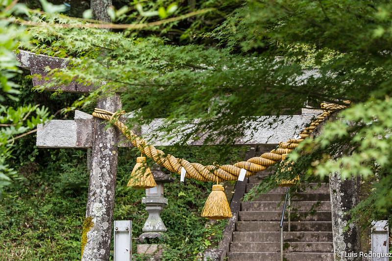 Estanque-Monet-Gifu-18