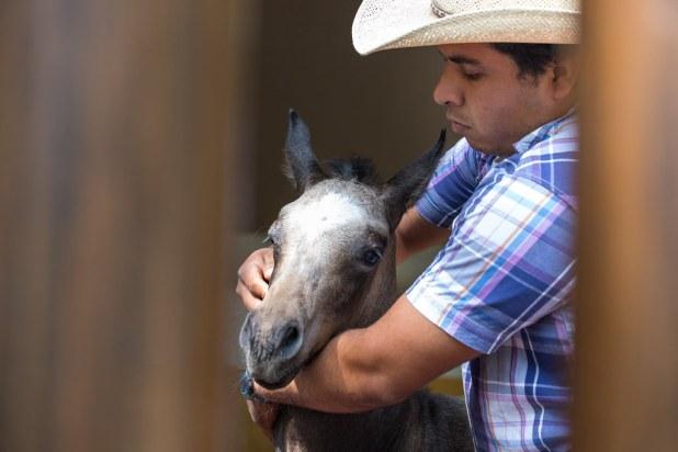Visita a una hacienda en México