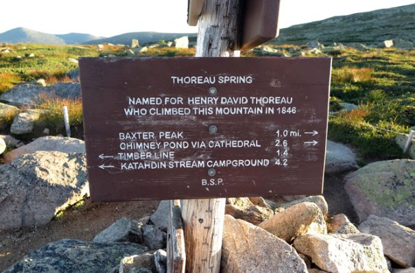 Thoreau Spring Sign