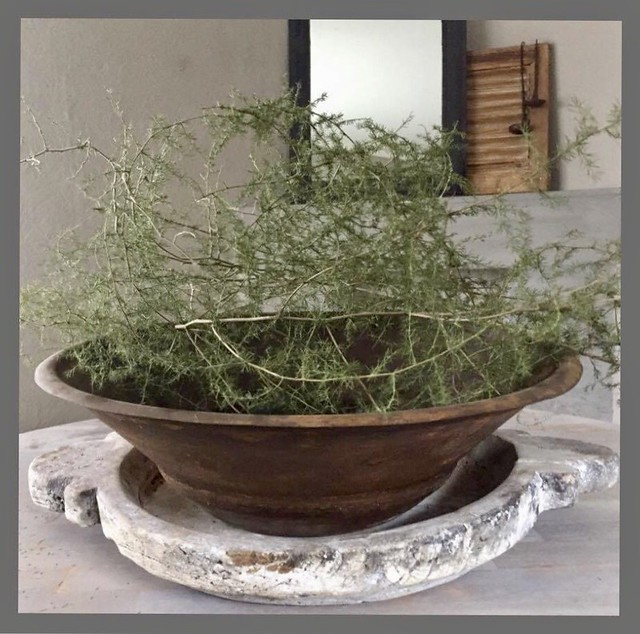 Houten schaal asparagus