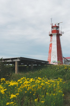 Partridge Island, Saint John