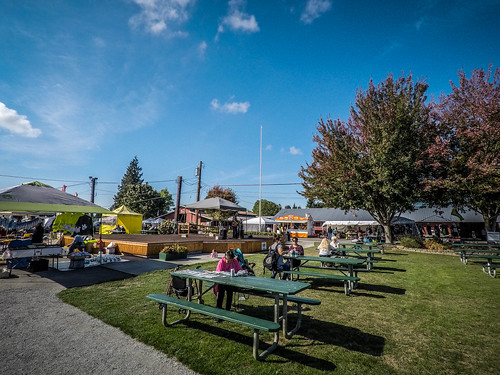 Skagit County Yard Sale-005