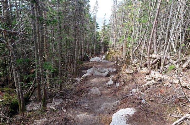 Katahdin Abol Trail Switchbacks