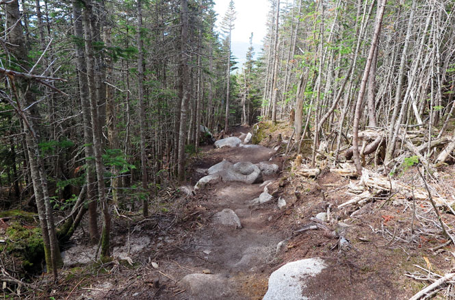 Katahdin Abol Trail Switchbacks