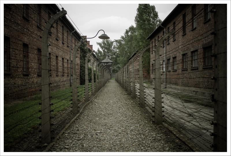 Auschwitz-39