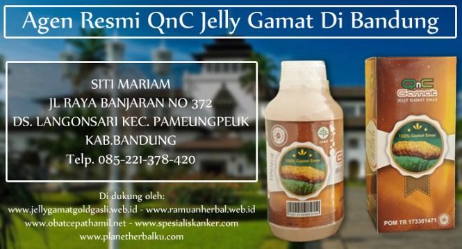 Agen Resmi QnC Jelly Gamat Di Bandung