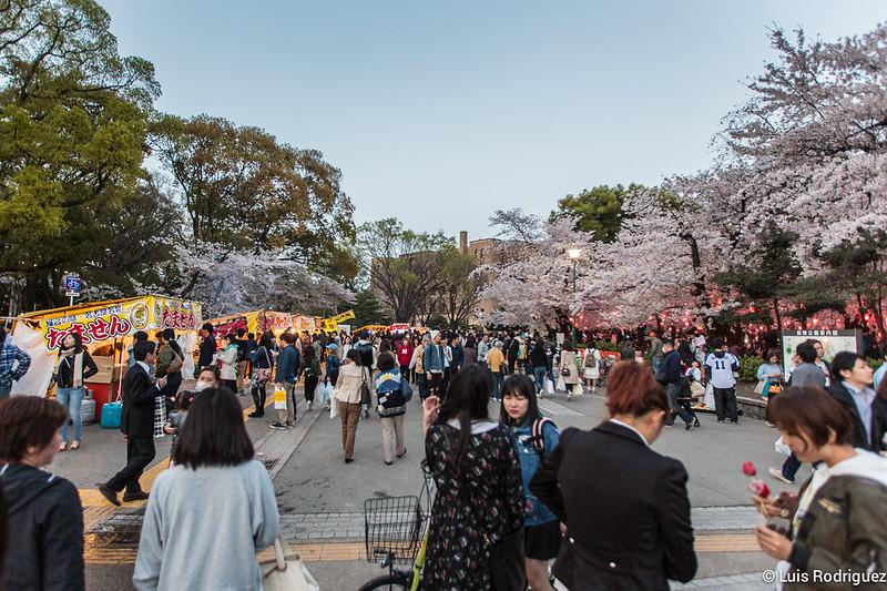 Parque-Tsuruma-Nagoya-3