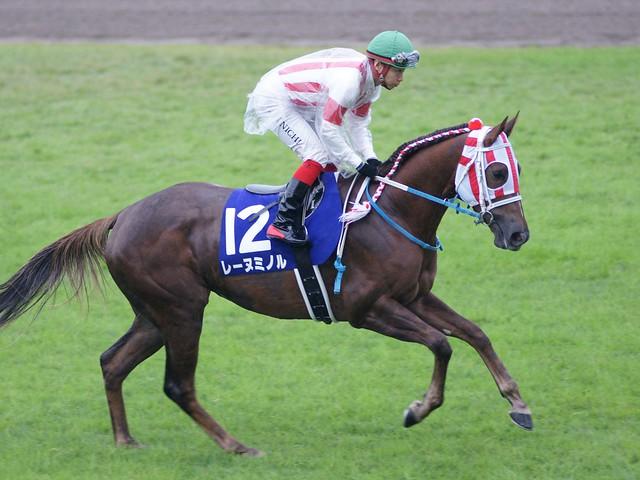 レーヌミノル(返し馬)