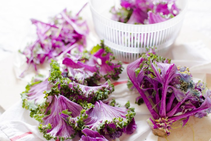Flowering Kale Salad