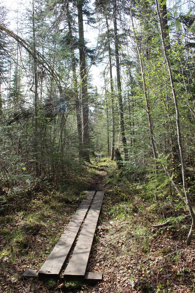 Pukaskwa Coastal Trail Adventure 11