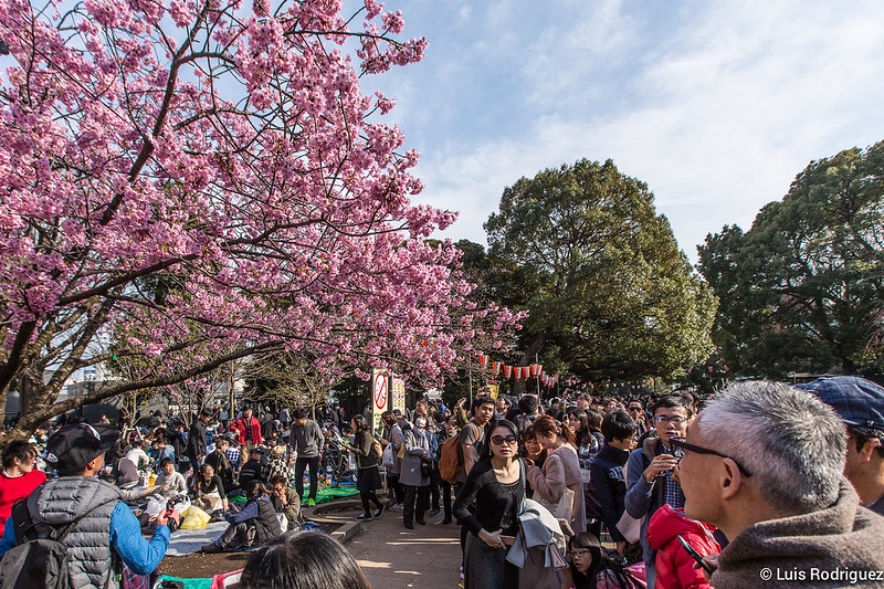 Ueno-Park-13