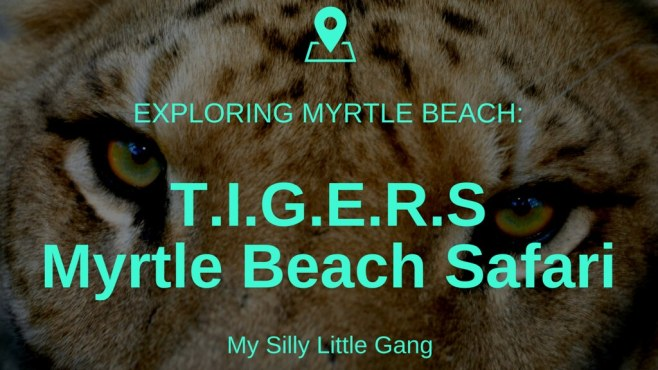 T.I.G.E.R.S. Myrtle Beach Safari Review