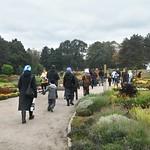 207 10 01 Seasons park