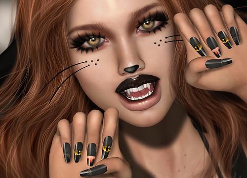 *^-^Meow^-^*