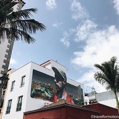 #streetart #vs #palmtree #visitTenerife #wanderlust #tenerife #canaryisland #travel #travelgram #guardiantravelsnaps #islascanarias #spain #ig_europe #instatravel #vsco #vscocam #bbctravel #tourism #shotoniphone #explore #lovecanaryisland #tenerifetag #sh