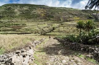 Zwischen El Cercado und Chipude