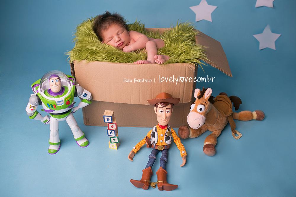 danibonifacio-lovelylove-ensaionewborn-newborn-fotografa-fotografia-acompanhamentobebe-infantil-criança-gestante-gravida-ensaio-book7