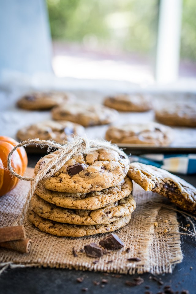 pumpkin cocolate chip cookies