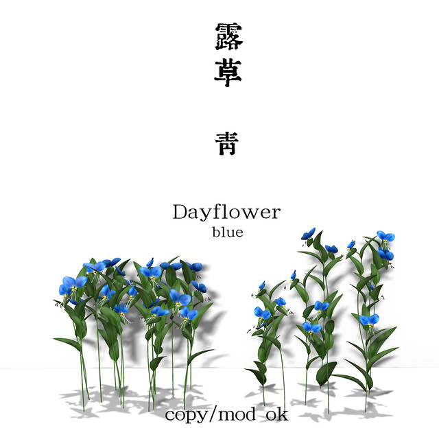 *NAMINOKE*DayFlower - 露草 BLUE