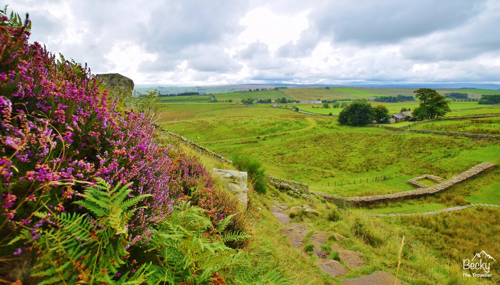 Hadrian's Wall from The Sill (3)