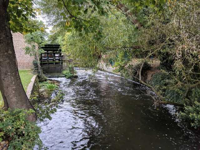 Paseo por el río Wandle