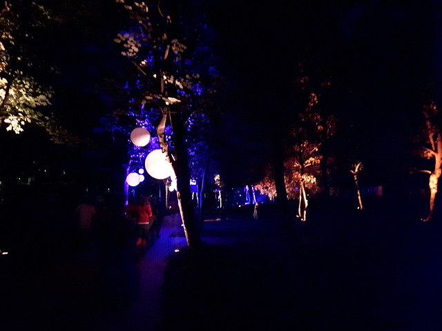 Ostend Night Run 2017 (1)