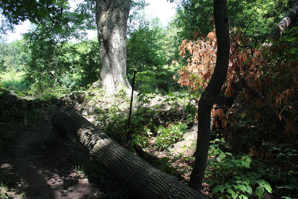 Scotsdale Farm along the Bruce Trail
