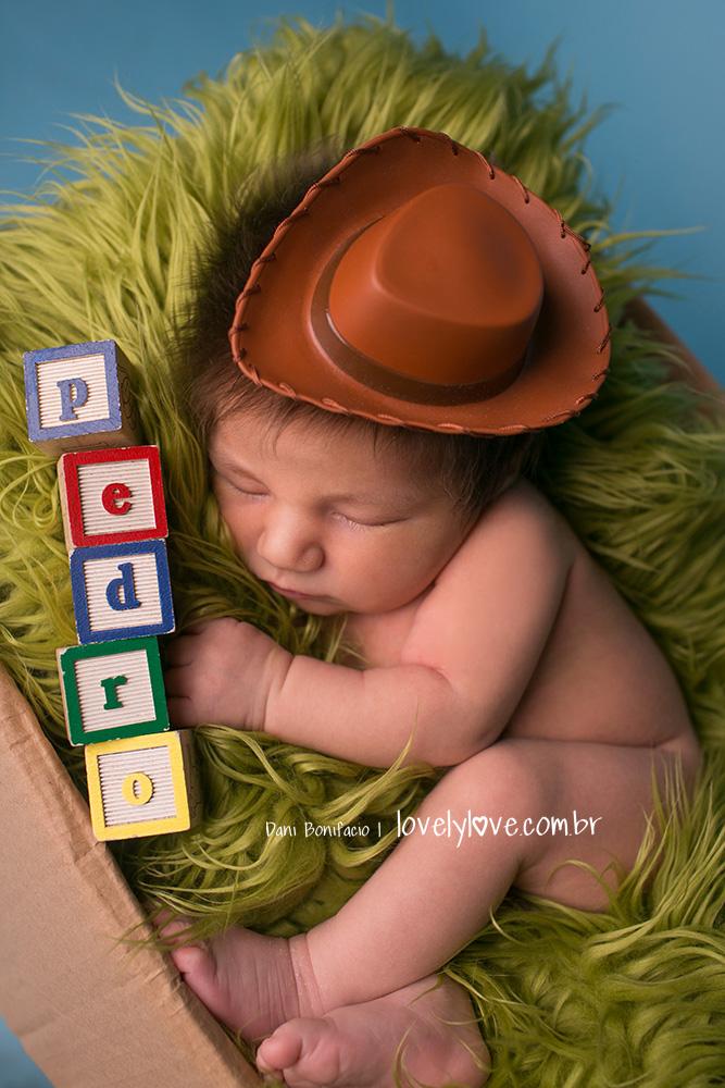 danibonifacio-lovelylove-ensaionewborn-newborn-fotografa-fotografia-acompanhamentobebe-infantil-criança-gestante-gravida-ensaio-book9