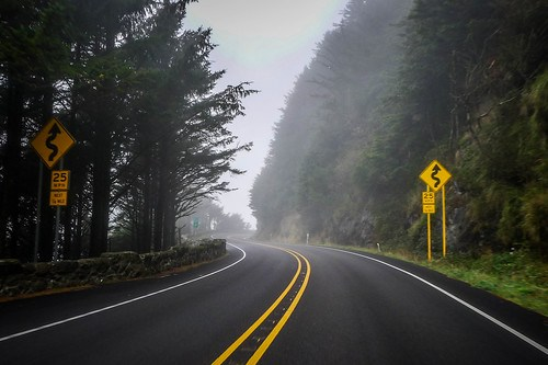 Oregon Coast Road in Fog