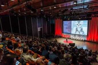 TEDxBoston-166