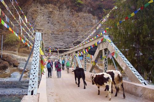 Annapurna Circuit - Nepal R (8)
