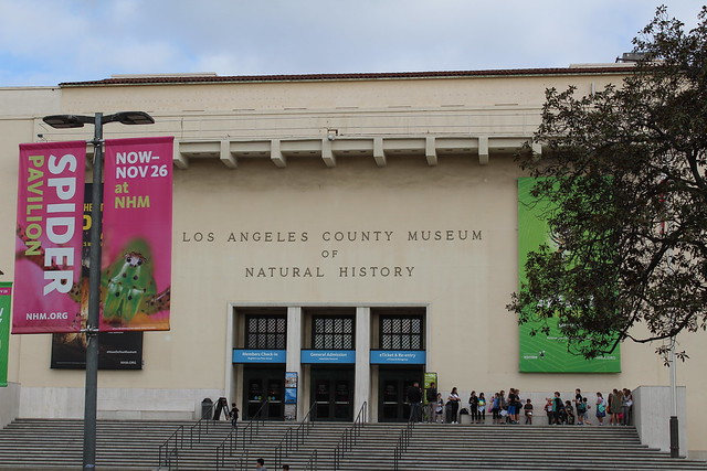 Museum Of Natural History Los Angeles Imax