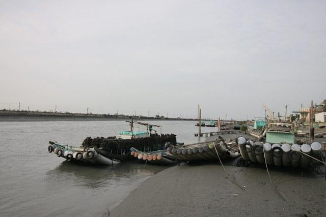 口湖成龍濕地 (10)
