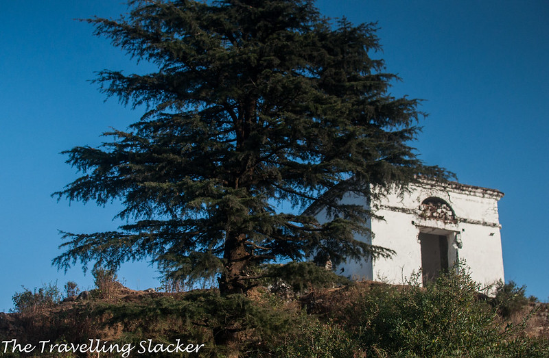 Mussoorie Winter (38)