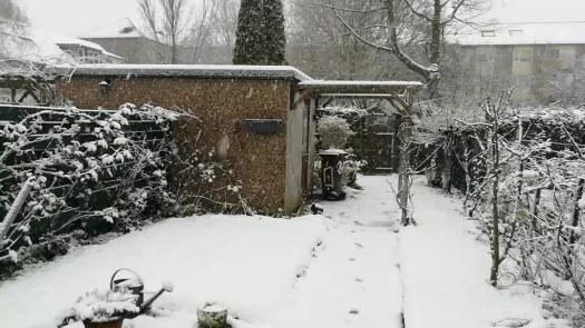 Nieva en Utrecht