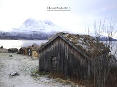 Kvaløya_10_11_2017_II