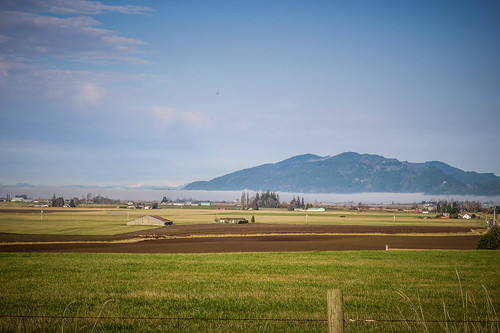 Skagit Valley Fog-006