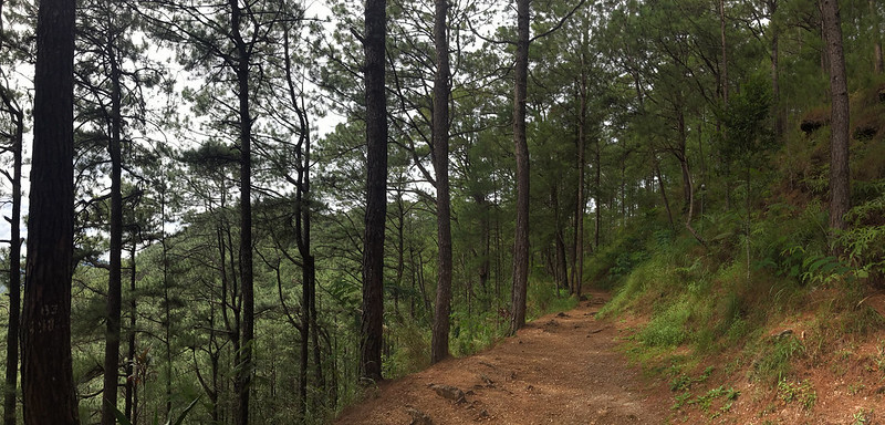 20171109_100545 Baguio - Tree Top Adventure