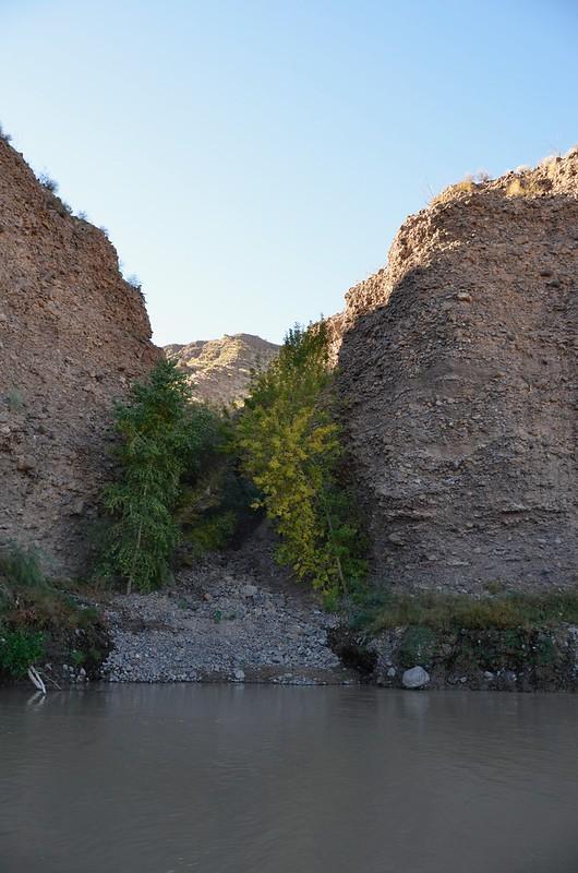 Gila Box Riverview Campground scene