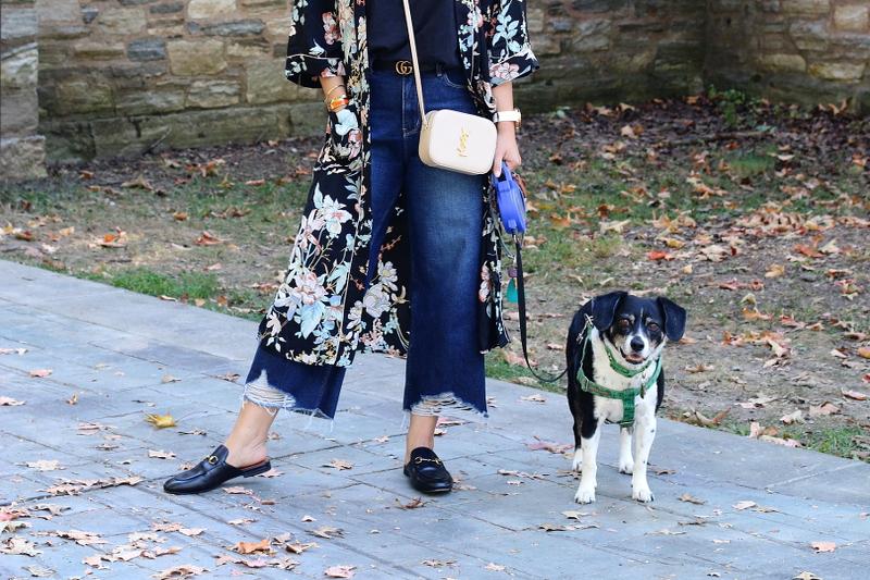 dog-beagle-cropped-denim-pants-gucci-mules-ysl-bag-5