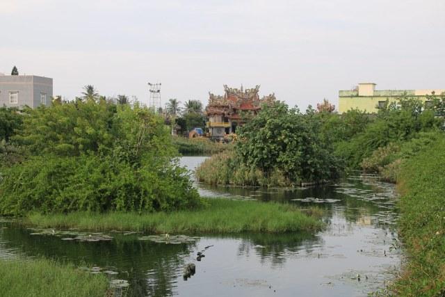 口湖水井社區 (5)