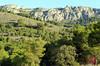 Les Rutes del Centre: Font de l'Estallador-Coll de Penyarubia-Cova Roja – Biar 26.11.17