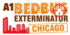 Exploring The Different Bed Bug Treatments Available To You https://t.co/UxWuLcx2Gn https://t.co/QxLi2lEpwW………… https://t.co/dtvFj55gB9